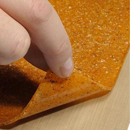 immagine di un particolare di un foglio del Kit 6 fogli antiaderenti per essiccatore Biosec