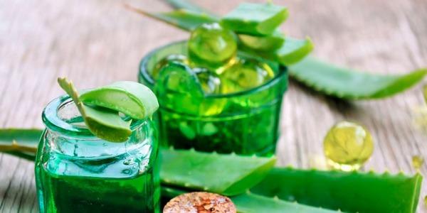 Energy drink detox a base di aloe: la ricetta di inizio primavera