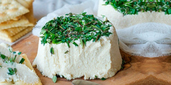 Formaggio vegan: come farlo in casa partendo dal latte vegetale autoprodotto